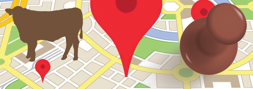 map with cow and pin